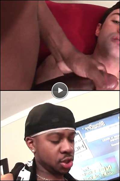 free black dicks pics video